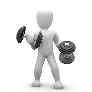 Bodybuilding Training Information