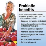 What Are Probiotics And How They Affect Our Health